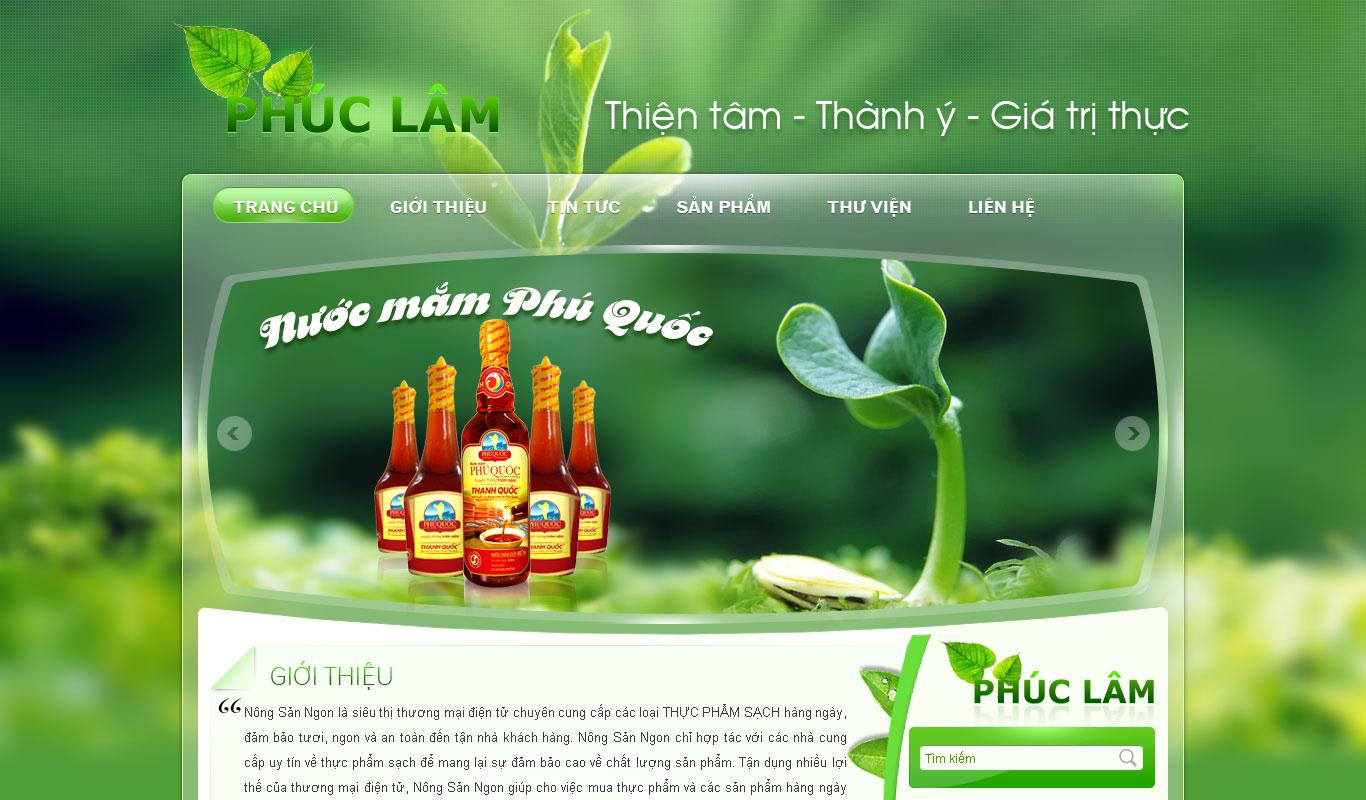Thiết kế website đnẹ ở Vĩnh Phúc